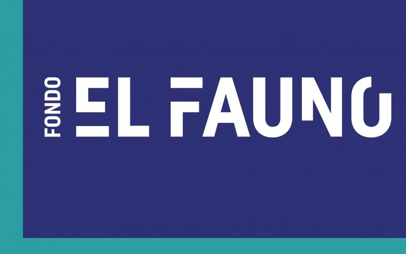 """Fondo para el Fomento Audiovisual y Cinematográfico """"El Fauno"""""""